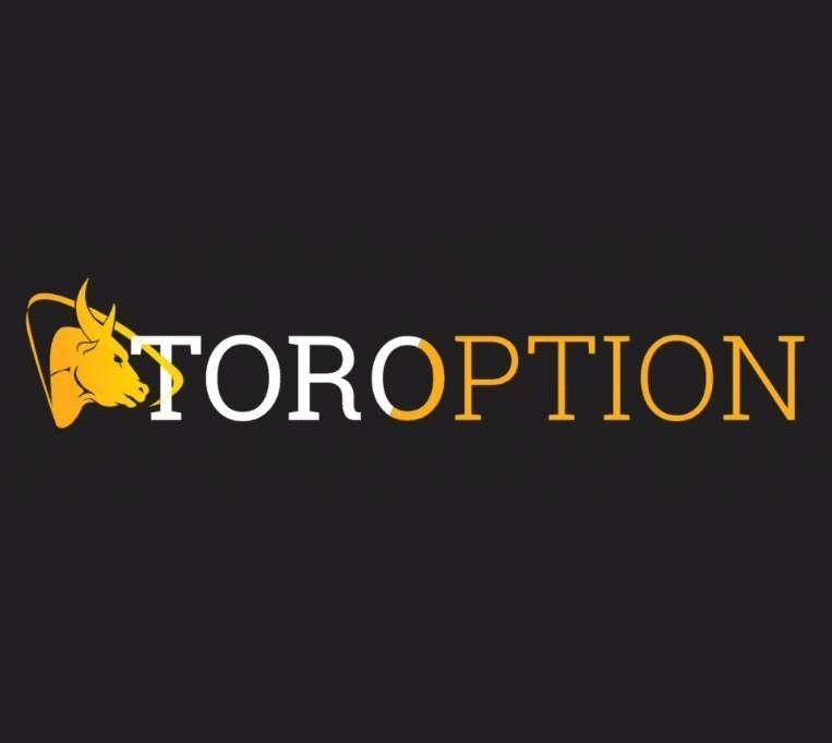 Tor Option