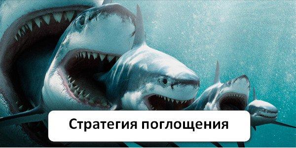 Акула бинарные опционы хеджирование бинарными опционами и форекс