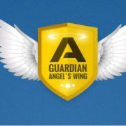 Честный обзор системы «Ангел Хранитель» для бинарных опционов