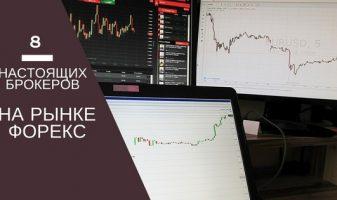 8 настоящих брокеров на рынке Форекс с выводом на межбанк